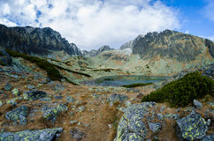 Il Tarn in alto Tatras, Slovacchia Fotografia Stock Libera da Diritti