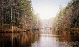 Il Tarn con foschia durante nel lago del terreno boscoso Fotografia Stock Libera da Diritti