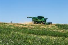 Il tecnico lavora nel campo per il raccolto Immagine Stock Libera da Diritti