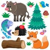 Il tema degli animali della foresta ha messo 2 Fotografie Stock Libere da Diritti