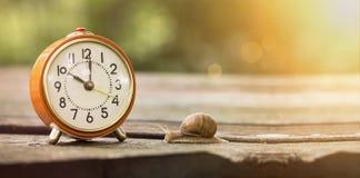Il tempo è lento Fotografie Stock