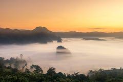 Il tempo di alba e della foschia con il girasole di Maxican, paesaggio a Phu Langka, provincia di Payao, Tailandia immagini stock libere da diritti