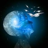 Il tempo di mente della galassia vola Immagini Stock Libere da Diritti
