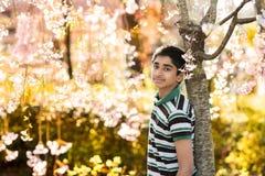 Il tempo di primavera… è aumentato foglie, sfondo naturale fotografia stock