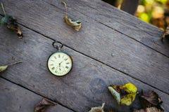 Il tempo va vicino: aria aperta d'annata dell'orologio; legno e foglie fotografia stock libera da diritti