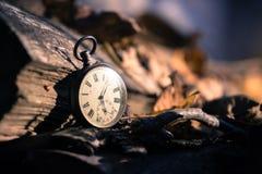 Il tempo va vicino: aria aperta d'annata dell'orologio; legno e foglie immagini stock libere da diritti