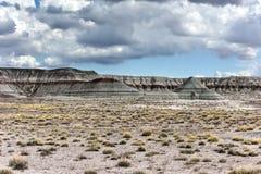 Il tepee - Forest National Park petrificato Immagini Stock Libere da Diritti