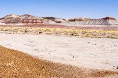 Il tepee ha petrificato Forest National Park Immagini Stock Libere da Diritti