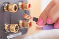 Il terminale filo ad alta fedeltà dell'altoparlante per Bi-collegamenti con l'oro ha placcato i connettori Fotografia Stock