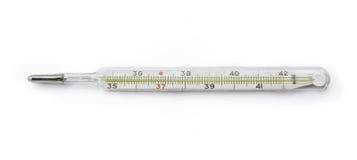 Il termometro di mercurio fotografia stock libera da diritti