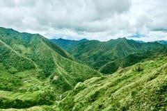 Il terrazzo della risaia sistema le Filippine Fotografie Stock Libere da Diritti