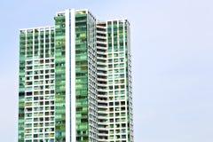il terrazzo Tailandia di Bangkok nei palazzi del distretto di ufficio si inverdisce Immagini Stock