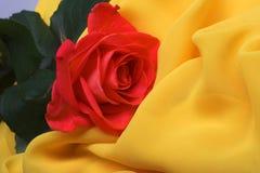 Il tessuto giallo ed è aumentato Fotografia Stock