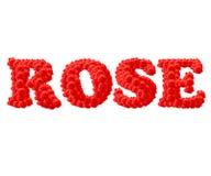 Il testo rosso della Rosa Fotografia Stock Libera da Diritti