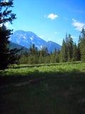 Il Tetons. immagine stock libera da diritti
