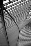 Il tetto della stazione ferroviaria di Liège-Guillemins Fotografie Stock Libere da Diritti