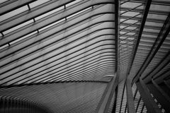 Il tetto della stazione ferroviaria di Liège-Guillemins Immagini Stock Libere da Diritti