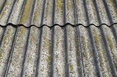 Il tetto di ardesia è coperto di muschio verde Immagine Stock