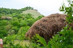 Il tetto di una capanna coperta di paglia nella priorità alta Un verde fotografia stock