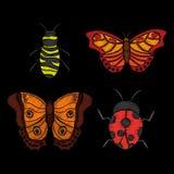 Il textle della farfalla e dell'ape della coccinella del ricamo progetta l'immagine Immagine Stock