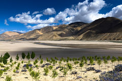 Il Tibet Cina Fotografia Stock