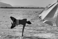 Il tipo che salta al mare fotografia stock