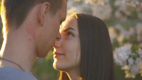 Il tipo e la ragazza amorosi di estate fanno il giardinaggio al tramonto archivi video