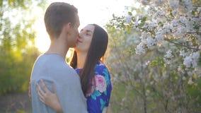 Il tipo e la ragazza amorosi di estate fanno il giardinaggio al tramonto stock footage