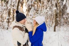 Il tipo e la ragazza hanno un resto nel legno dell'inverno fotografia stock libera da diritti
