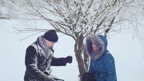 Il tipo e la ragazza stanno spazzolando la neve fuori dall'albero archivi video