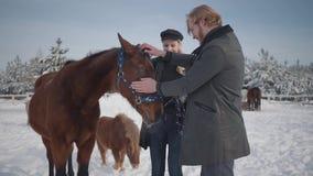Il tipo ed il cavallo adorabile del colpo della ragazza su un ranch del paese nella stagione invernale Una giovane coppia cammina stock footage