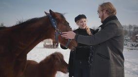 Il tipo ed il cavallo adorabile del colpo della ragazza su un ranch del paese nella stagione invernale Una giovane coppia cammina archivi video