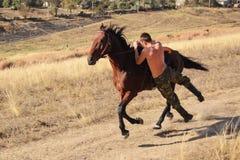 Il tipo sta guidando un horse2 Fotografia Stock
