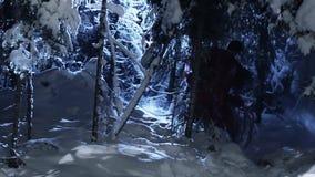 Il tipo sveglio e la ragazza vestiti in vestiti rossi si muovono lentamente nella foresta nevosa dell'inverno stock footage