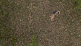 Il tipo tiene l'equilibrio sulla gamba e sui tratti il corpo nella foresta archivi video