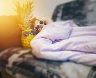 Il tipo, uomo, pantaloni a vita bassa in occhiali da sole riposa a letto, con l'ananas in vetri, stile di vita dell'estate, festa Fotografie Stock Libere da Diritti