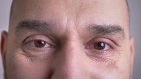 Il tiro del primo piano del mezzo ha invecchiato il fronte maschio caucasico con gli occhi marroni che esaminano diritto la macch stock footage