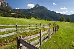 Il Tirolo del sud, prati Fotografia Stock