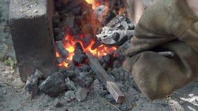 Il tondino di ferro sta riscaldando in carboni brucianti prima della forgia stock footage