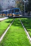 Il tram si sposta per l'erba Fotografia Stock Libera da Diritti
