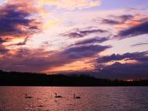Il tramonto con bello variopinto si rannuvola un lago immagine stock