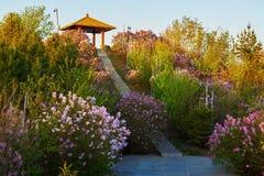 Il tramonto dei fiori e della pagoda Fotografie Stock Libere da Diritti