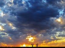 Il tramonto del ciclista fotografie stock