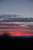Il tramonto del lampone fotografie stock libere da diritti