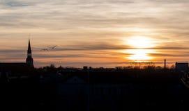 Il tramonto della città con gli uccelli fotografia stock libera da diritti
