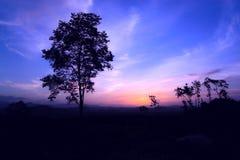 Il tramonto della luce morbida fotografia stock libera da diritti