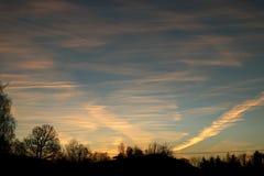 Il tramonto di mattina con gli alberi e l'alba Fotografia Stock