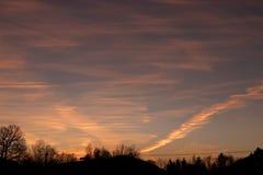 Il tramonto di mattina con gli alberi e l'alba Fotografie Stock Libere da Diritti