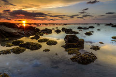 Il tramonto dorato di ora Fotografie Stock Libere da Diritti