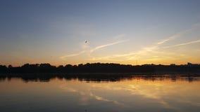 Il tramonto o l'alba con l'uccello di volo ed il fiume calmo sorge Fotografia Stock Libera da Diritti